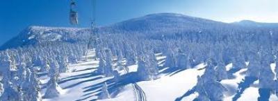 Ски Япония