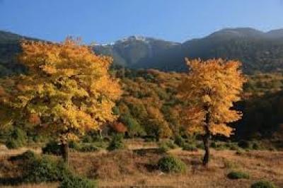 Резерватът Алиботуш