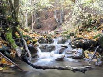 Води Витоша - планина