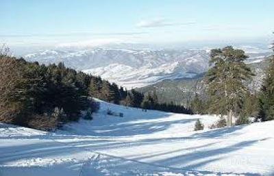 Паничище - България