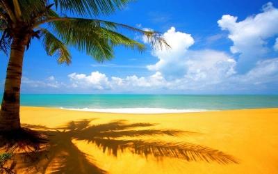 Плаж Коста Рей