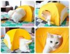 Котешка палатка