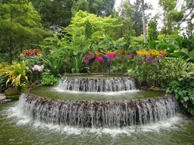 Ботаническата градина с орхидеите