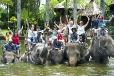 Слонския сафари парк в Таро e най-хубавият в света