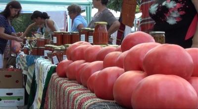 Доматения фест във Фетие се провежда през май